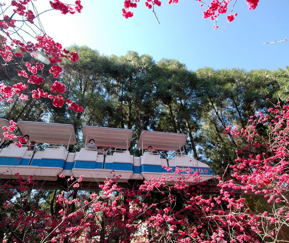 九族文化村包含日月潭纜車簡介-單軌電車 環繞著阿拉丁廣場行駛,各項精彩美景盡收眼底,並進入太空山內部,體驗驚心動魄的的感覺